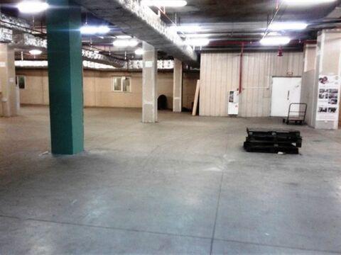 Сдам складское помещение 573 кв.м, м. Лесная - Фото 3