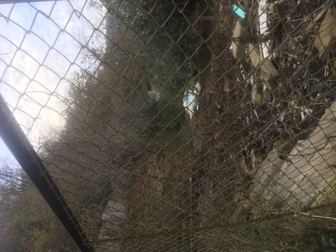 Продам земельный участок в Сочи на Мацесте - Фото 2