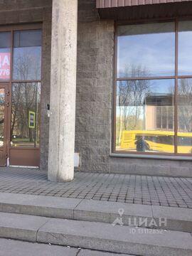 Аренда торгового помещения, м. Петроградская, Ул. Савушкина - Фото 2