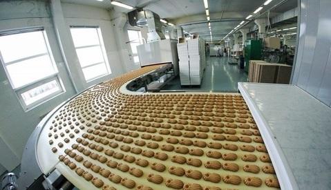 Действующие производств в Тульской области с доходом 10 мил в месяц - Фото 4