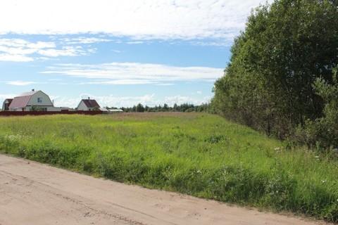 Участок в Псковской области на озере - Фото 3