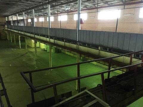 Сдам складское помещение 2975 кв.м, м. Площадь А. Невского I - Фото 5