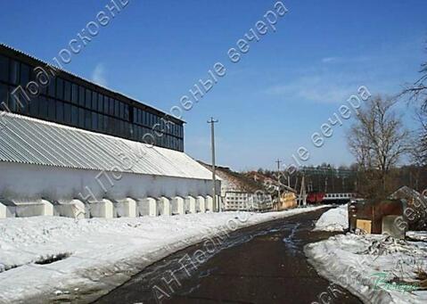Новорижское ш. 110 км от МКАД, Волоколамск, Участок 203.4 сот. - Фото 3