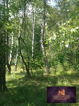 Продам участок в деревне Крюково рядом с лесом и г Чехов - Фото 2