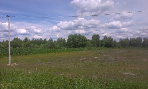 Продажа участка, Себеж, Себежский район - Фото 5