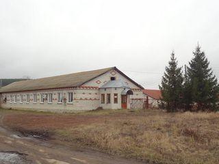 Продажа производственного помещения, Балтайский район - Фото 1
