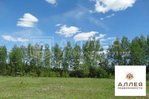Лесной участок 43.5 сот. - Фото 2