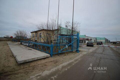 Аренда офиса, Надым, Ул. Таежная - Фото 1