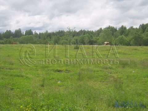 Продажа дома, Спирово (Ефимовское г/п), Бокситогорский район - Фото 4
