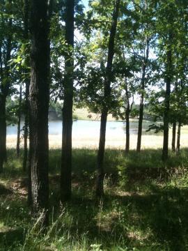 Продается земельный участок в 14 км. от г.Чебоксары - Фото 3