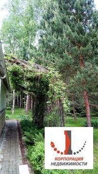 Аренда, дом, 731 кв.м, СНТ Творчество, п. Ватутинки - Фото 4