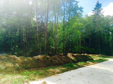 Продаю участок. 20 соток леса. кп Ковчег - Фото 5