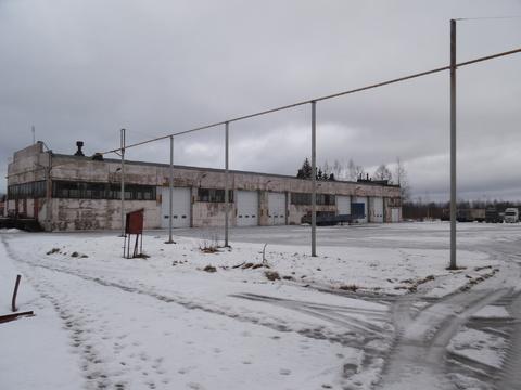 Тосно, ул Промышленная дом 5 - Фото 1