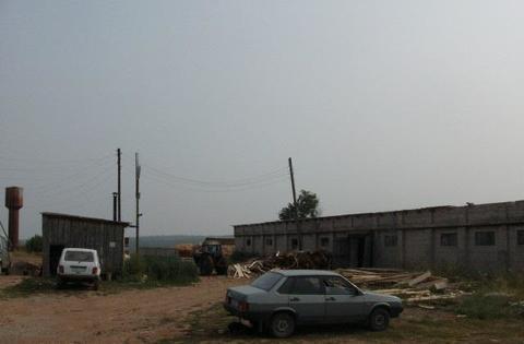 Продам зерносклад/лесопилка, 675 кв.м, с. Ягул - Фото 1