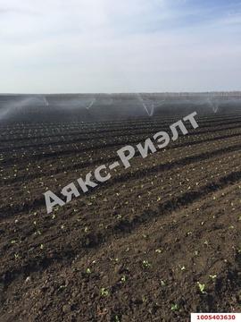 Продажа офиса, Холмская, Абинский район, Ул. Красная