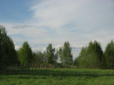 Участок на Волге 66 соток в д. Налуцкое - Фото 2