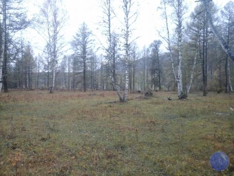Продажа участка, Усть-Кокса, Усть-Коксинский район - Фото 3