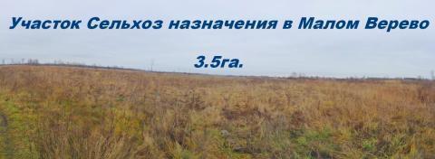 Участок Сельхоз назначения в Малом Верево 3.5га. - Фото 1