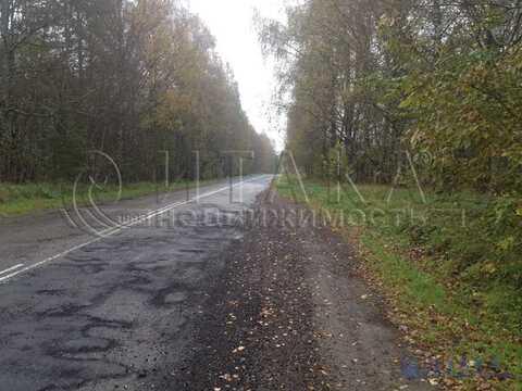 Продажа участка, Ореховно, Плюсский район - Фото 5