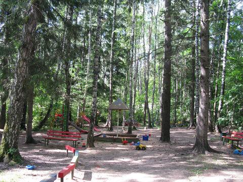 Рублево-Успенское ш. 20км. ран Ново-Дарьино лесной участок 76 соток. - Фото 4