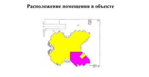 Псн в собственность 201.6 м2, м.Проспект Ветеранов - Фото 3