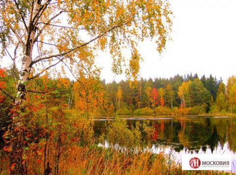 Лесной участок 23 сот, ПМЖ, 30 км. Варшавского или Калужского ш. - Фото 5