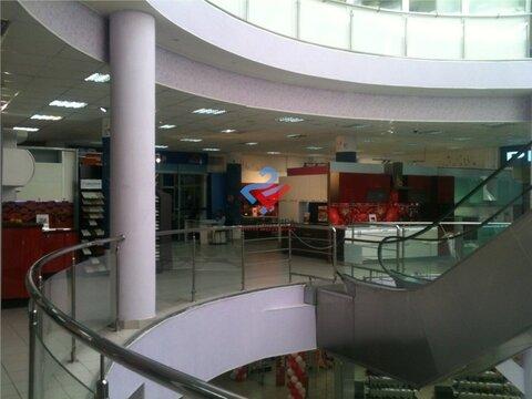 Торговая площадь 1200м2 в тск Сипайловский - Фото 4