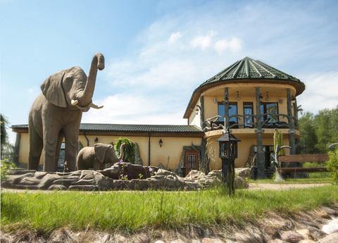 Красивый дом в Африканском стиле - Фото 1