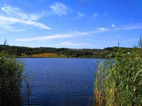 Судогодский р-он, Конюшино д, земля на продажу - Фото 5