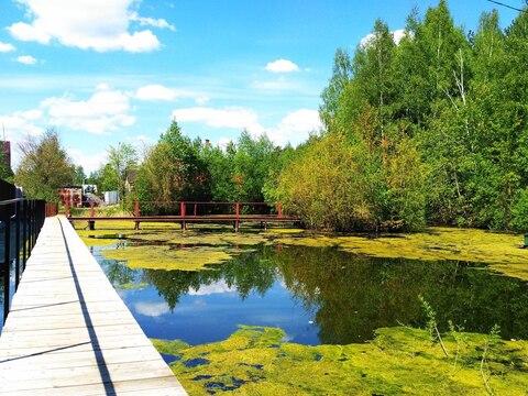 Продам участок с прудом в д. Акулово , Кубинка-10 - Фото 3