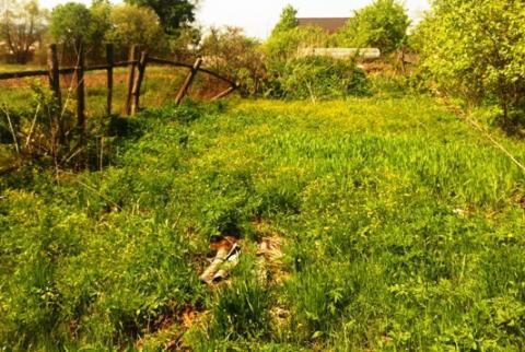 Старый бревенчатый дом на 18 сотках, Рузский район, 80 км. от МКАД - Фото 4
