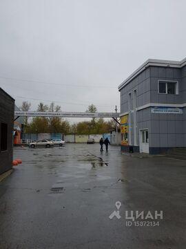 Аренда офиса, Барнаул, Улица Челюскинцев - Фото 2