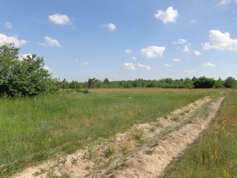 Продается Земельный участок ул. Толмачева - Фото 3