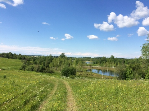 Продам участок на берегу озера Егорьевское - Фото 2
