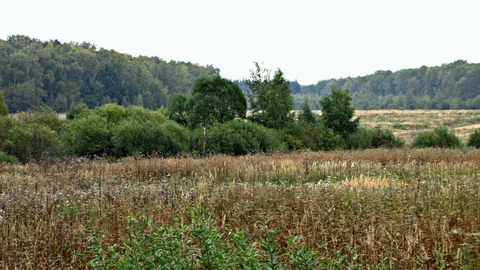 Продается земельный участок, 33 сотки, Татариново ИЖС - Фото 2