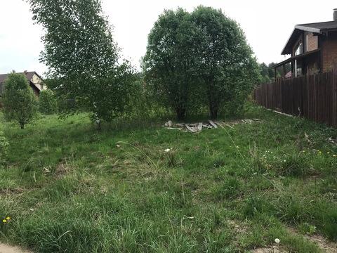 Продается отличный участок в деревне Малые Петрищи. - Фото 3