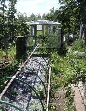 Дача СНТ Березка 2 Ногинск - Фото 4