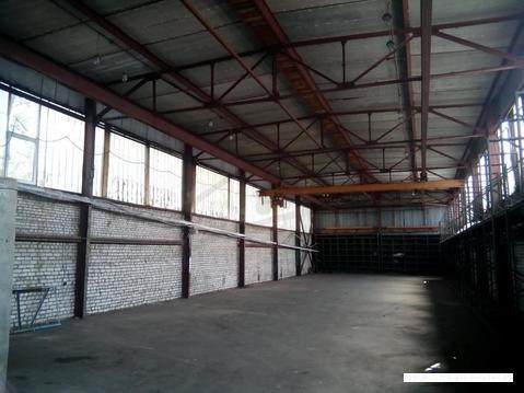 Сдается склад, Руза г, 507м2 - Фото 4