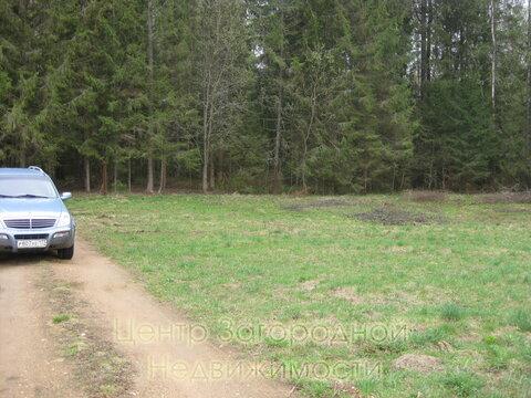 Участок, Новорижское ш, 84 км от МКАД, Самошкино д. (Рузский р-н). . - Фото 3