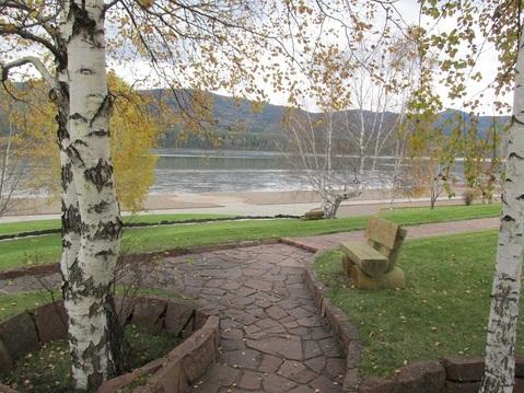 Участок 88 соток в Усть-Мане на берегу реки - Фото 5