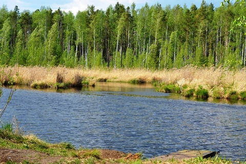 Участок в Ольховке 4,77 Га на берегу водного канала - Фото 1
