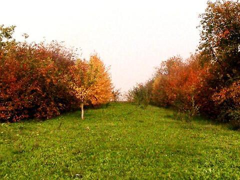 Продам участок на берегу озера в Жуково - Фото 1