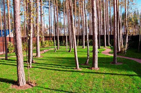 Сдается современный коттедж 230м2 в закрытом поселке Белоострова - Фото 4