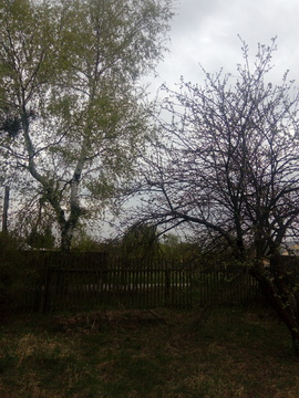 Участок с возможностью газификации близ Старой Купавны - Фото 2