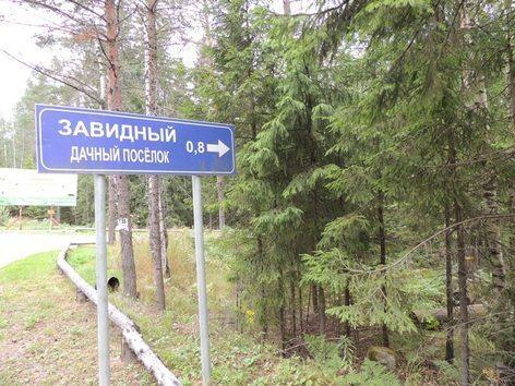 Продажа участка, Сосново, Приозерский район - Фото 2