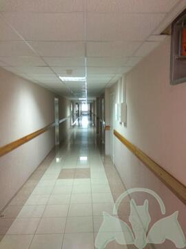 Аренда: Офис 47 м2 - Фото 4