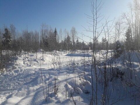 Продаётся участок 9.5 соток около самого леса. - Фото 5