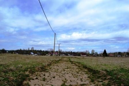 Земельный участок в дер. Таровицы, Гатчинский р-н - Фото 3