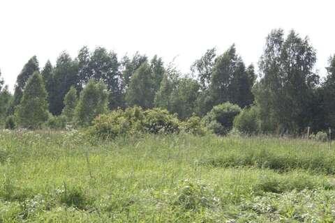 Продажа участка, Трухачево, Судогодский район - Фото 3