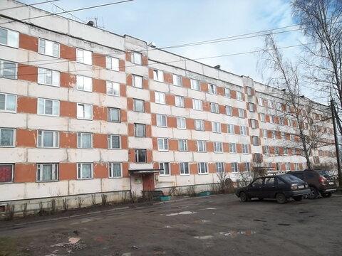 3-комнатная квартира в п. Ушаки (с/х) - Фото 1